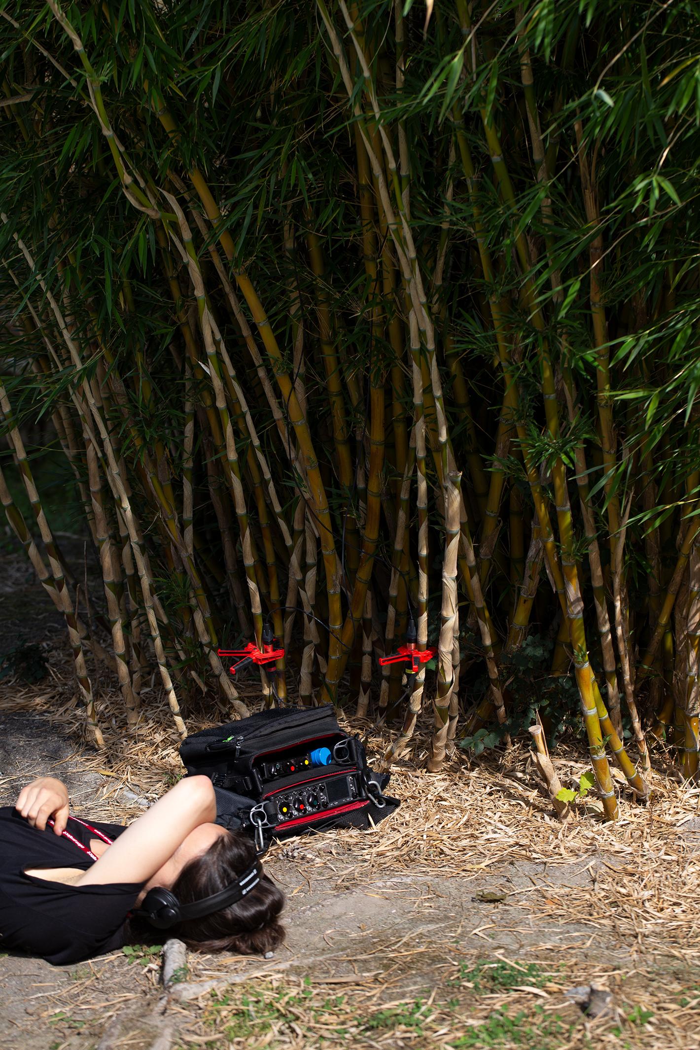 Katharina listening to bamboo