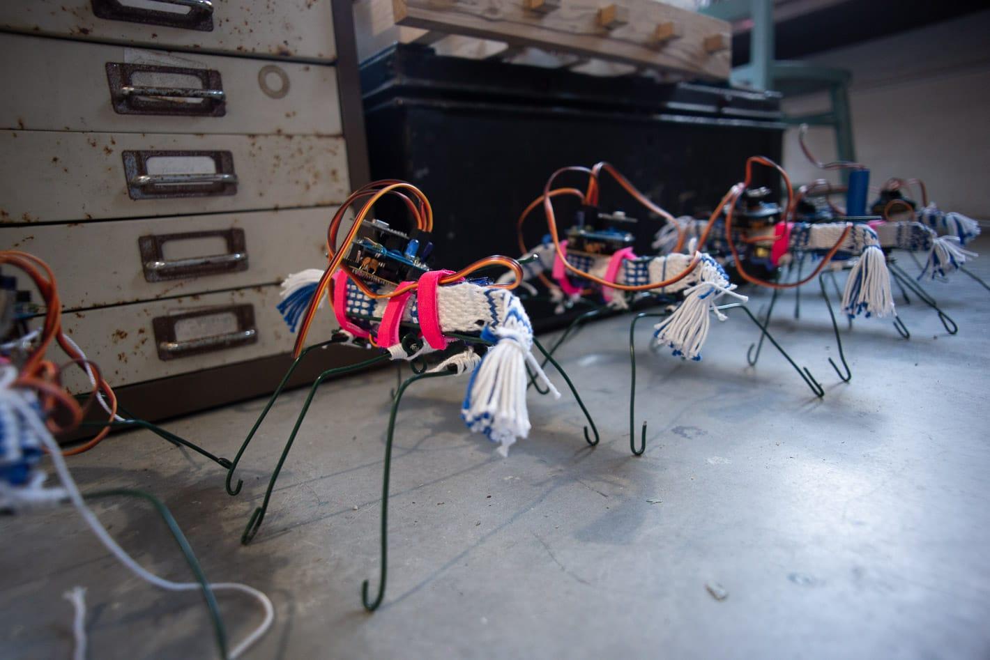 robot bugs of penelope