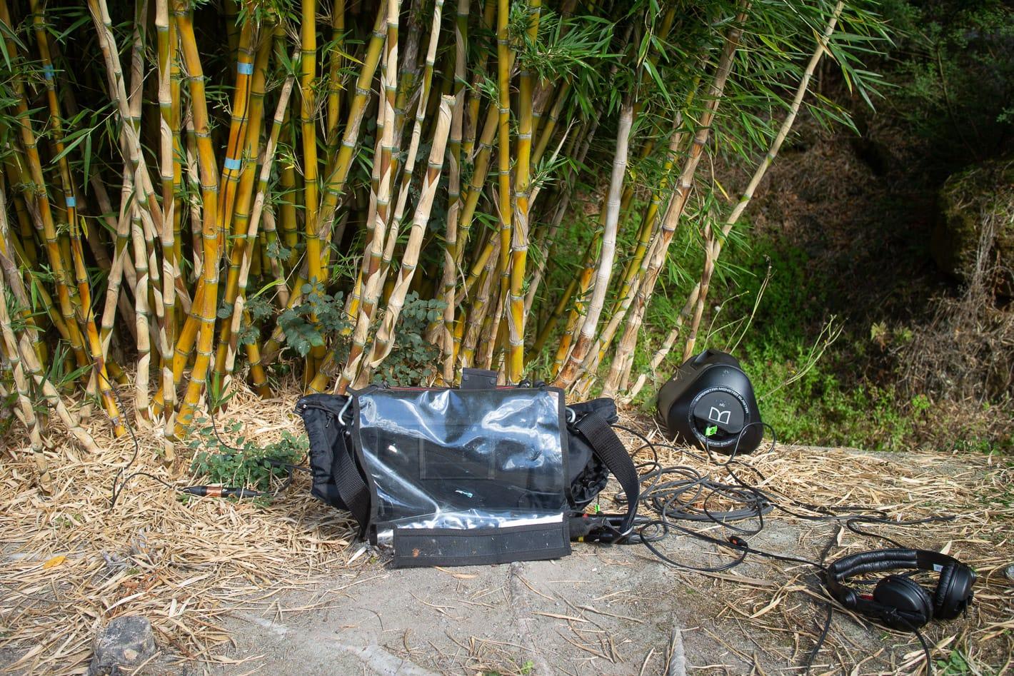 the bamboo setup