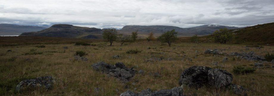Microworld 2.4 — Saanavankka field